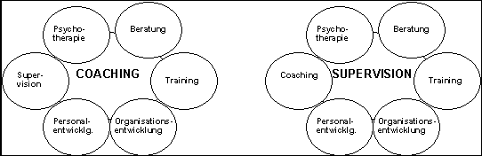 Business coaching thesis